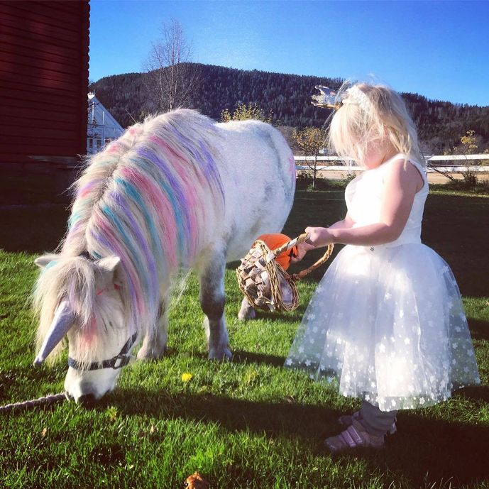 real my little pony enhjørning ponni eventyr