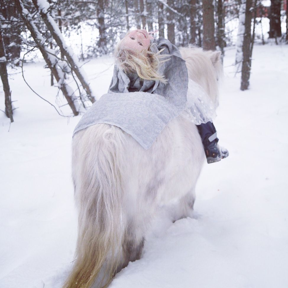 fairytale girl princess white pony snow forest